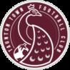Taunton Town FC New Logo